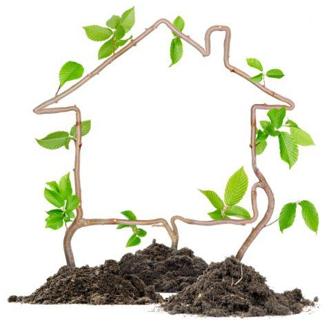 Ways to Make your Home Greener